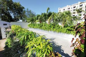 Neun Pflanzkästen fassen die Pflanzen auf der Dachterrasse ein