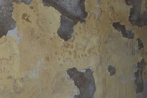 Schädlich für Gesundheit und Bausubstanz: Schimmel und Ausblühungen als Folge von Feuchteschäden