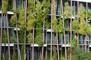 Fassadenbegrünung am Institut für Physik der Humboldt-Universität zu Berlin. 450 Kletterpflanzen wachsen in 150 Fassadenkübeln und im natürlichen Boden