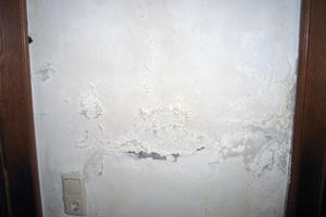 Wenn die Farbe oder der Putz von der Wand abbröckelt, ist das Verlangen nach einer baldigen Sanierung gut nachvollziehbar<br />