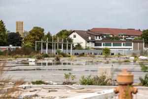 Die städtebauliche Planung für das neue Quartier auf Spinelli ist weit fortgeschritten. Bis 2023 – dem Jahr der Bundesgartenschau – soll ein erster Bauabschnitt fertiggestellt sein