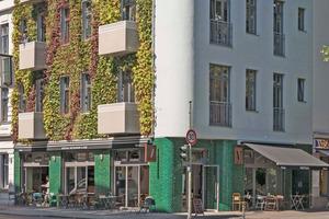 Mit grün glasierten Fliesen setzt die Erdgeschossfassade in Farbe und Materialität einen besonderen Akzent