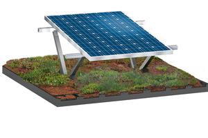 Die Gründach-Unterkonstruktion für PV-Systeme von Bauder ist eine wirtschaftliche Lösung für die Kombination von Dachbegrünung und Photovoltaik
