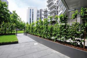 Maßgefertigte Hochbeete der Firma Richard Brink säumen die Gärten, die zu den Wohnungen im Parterre gehören