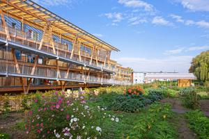 """<irspacing style=""""letter-spacing: -0.015em;"""">Wulsdorf: Urban-Gardening – gemeinsames Gärtnern fördert die Kommunikation und die soziale Bindung</irspacing>"""
