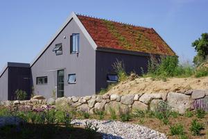Oben: Auch bei relativ steilen Dächern sind mittels Gründachpfannen Begrünungen möglich
