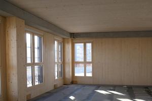 Sämtliche Bauelemente, die sich auf der Innen- und damit auf Wohnseite befinden, sind mit der Remmers Wohnraumlasur beschichtet