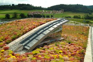 Dächer von Industrie, Kommunen, Gewerbe und Wohnbau können mit Dachbegrünungen einen großen Beitrag zu einem besseren Klima und zur Katastrophenvermeidung leisten