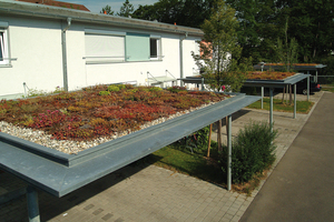 Für Dachkonstruktionen mit geringer Tragfähigkeit eignen sich Leichtgründachsysteme mit einem Gesamtgewicht um 70 kg/m²