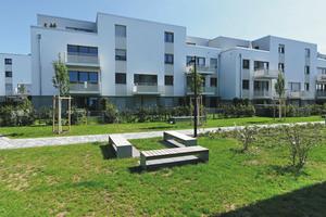 Die Sangzeilen in Rosbach: Hier entstanden in zwei Jahren Bauzeit 66 Mietwohnungen, verteilt auf drei Häuserzeilen.