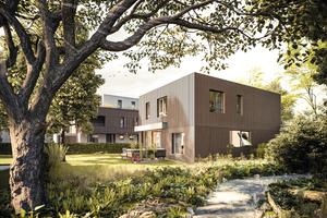 Die Einfamilienhäuser orientieren sich farblich an den Baumrinden des angrenzenden Waldes