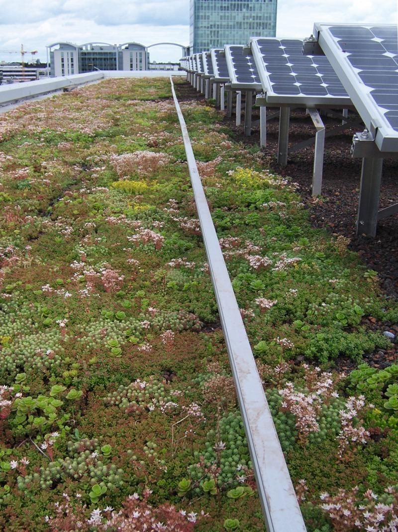 solarelemente auf flachdächern