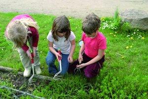 Prägung des ökologischen Bewusstseins schon beim Nachwuchs
