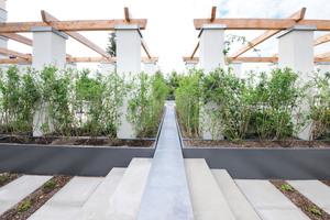 In den 500 mm hohen Beeten wachsen hochwüchsige Pflanzen, die zugleich als Sichtschutz dienen