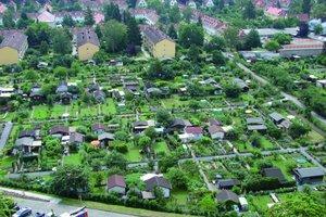 Luftbildaufnahme einer Kleingartenanlage am Stadtrand
