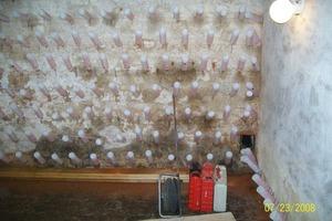 Nasse Wände bis unter die Decke: Hier sind mehrere Dutzend Porofin-Flaschen nötig, um das Gemäuer zu entfeuchten<br />
