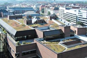 Begrünte Dächer sind schön anzusehen. Sie kühlen das Gebäude im Sommer und wärmen es im Winter