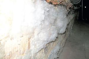 Die Auswirkungen von Nässe im Mauerwerk sind schwerwiegend, wie dieses Foto aus dem Keller eines Gebäudes dokumentiert<br />