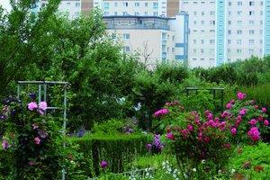 Kleingärten in der Nähe des Wohngebietes