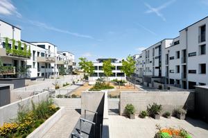 """Die Häuser des Wohnquartiers """"Take 5"""" gruppieren sich um einen zentralen Innenhof, der als """"Quartiersplatz"""" ein Ort der Gemeinschaft für die Bewohner ist"""