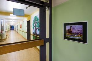 Abb. 5: Die vier Stockwerke des Caritas-Alten- und Pflegeheims Marienheim bekamen unterschiedliche Farbstimmungen