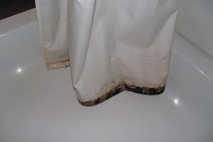 Der Schimmelbefall auf dem Duschvorhang kann sich über Sporenverteilung auch auf andere Bereiche des Badezimmers ausbreiten. Um das zu verhindern, sollten befallene Duschvorhänge entsorgt und erneuert werden. <br />