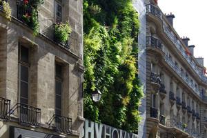 BHV Homme, Paris. Bodenfreie Fassadenbegrünung – Kühlung, Luftreinigung, Attraktivität in der städtischen Dichte