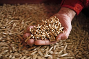 Holzpellets als nachhaltiger Brennstoff sind weltweit auf dem Vormarsch