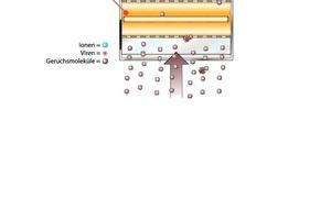 Die Kombination aus Photooxidation und Photokatalyse ermöglicht die Inaktivierung von Keimen und den Abbau von organischen Geruchsstoffen
