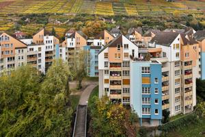 Farbenpracht im Herbst: Das Ensemble der Bäckermühle in Esslingen strahlt mit den bunten Weinbergen um die Wette