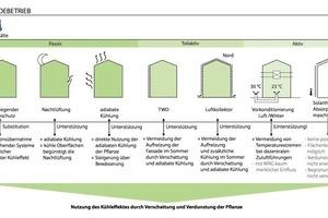 Maßnahmen zur Bedarfsdeckung der Kühlung. Darstellung der Synergien und Konkurrenzen in Kombination mit Gebäudebegrünung